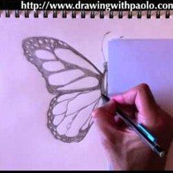 comment dessiner des animaux avec paolo