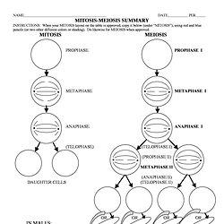 venn diagram success school diagram wiring diagram